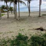 Naranjos /3500 m² / frente de playa / $150 usd x m2 2