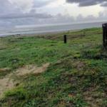 Naranjos /3500 m² / frente de playa / $150 usd x m2 3
