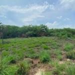 Terreno con vista al mar / 700 m2 / Agua Blanca-Santa Elena 2