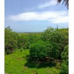 Casa en Santa Elena Tonameca/10,000 m²/ a 300 metros del mar 7