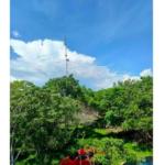 Casa en Santa Elena Tonameca/10,000 m²/ a 300 metros del mar 8