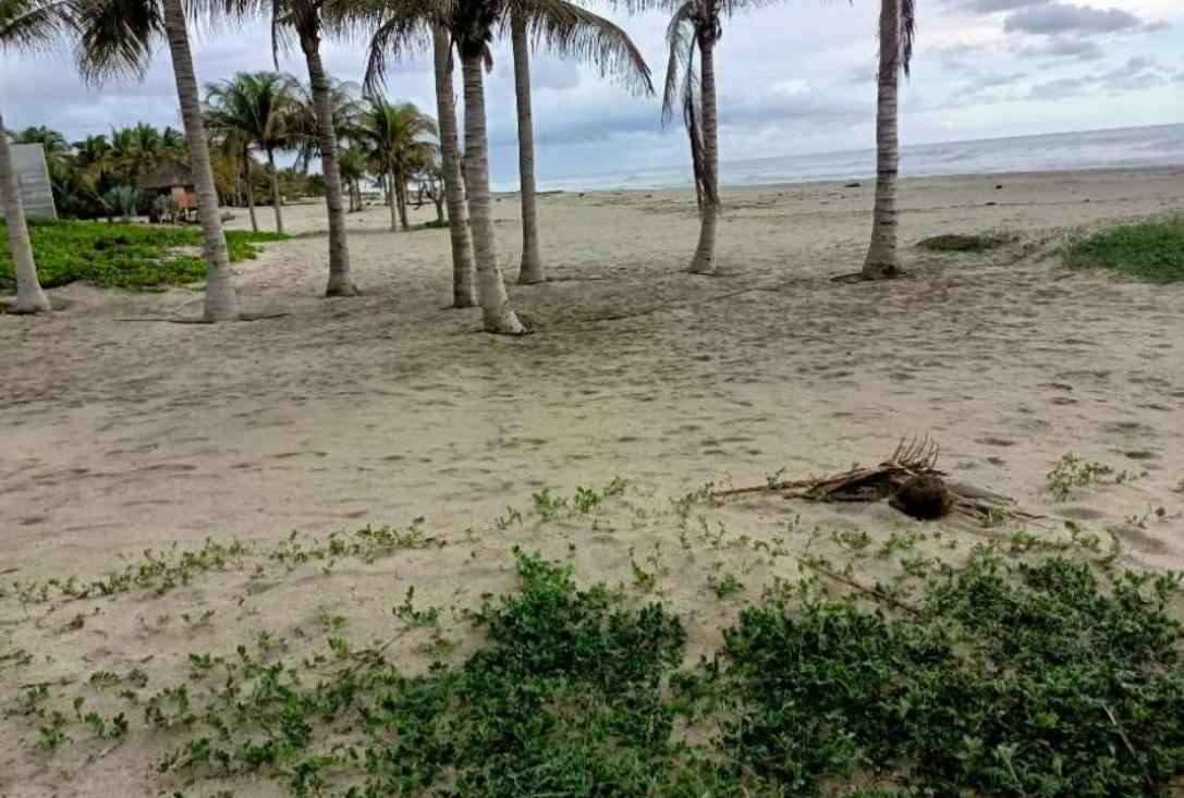 Naranjos /3500 m² / frente de playa / $150 usd x m2 / 1