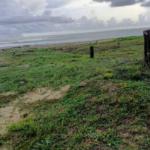 Naranjos /3500 m² / frente de playa / $150 usd x m2 / 3