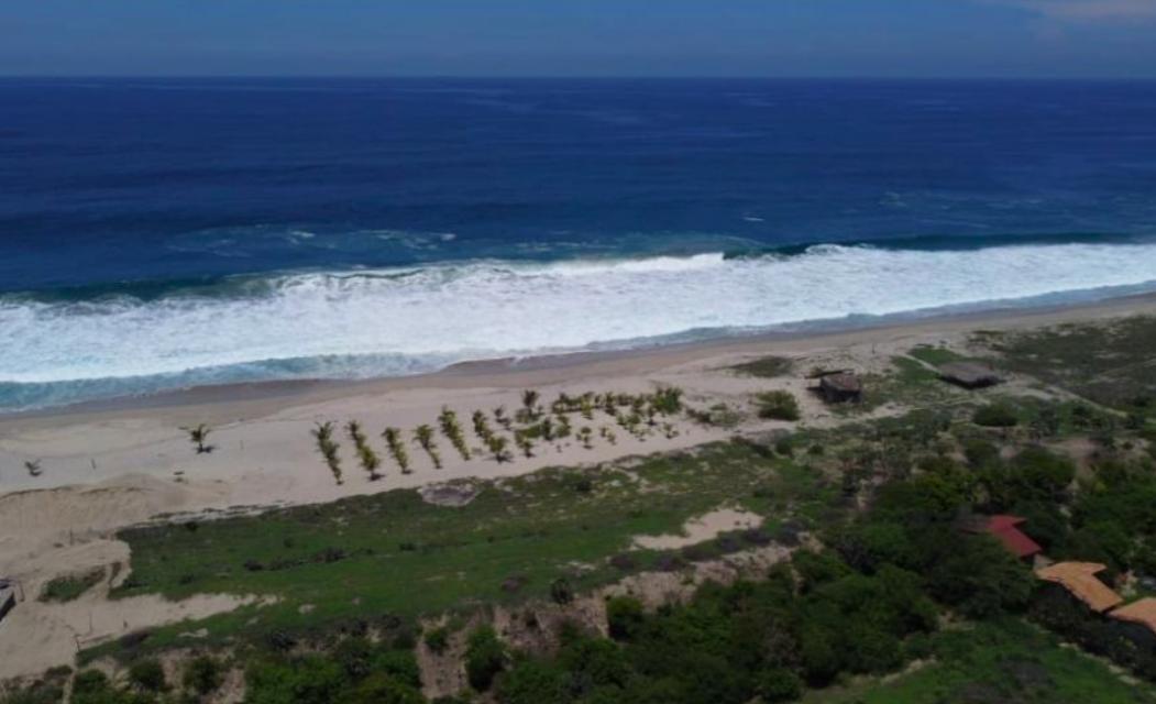 El venado / 5400 m2 / frente de Playa 1
