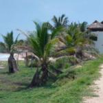Playa agua Blanca/120m2 comunal con su zona federal 3