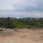 Rancho neptuno /1,739 m2 y 1,747 m2 / Frente de playa 4