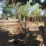 Punta Zicatela / Brisas de Zicatela / 300 m2 / 1 cuadra de la playa 4