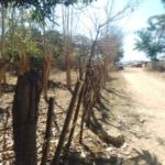 Punta Zicatela / Brisas de Zicatela / 300 m2 / 1 cuadra de la playa 5