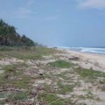 Rancho las mantas/7,018m2 frente de mar con escritura publica 2