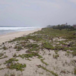 Rancho las mantas/7,018m2 frente de mar con escritura publica 3