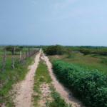 Santa Elena/15 hectáreas / vista al mar / colinda con el Río 2