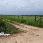 Santa Elena/15 hectáreas / vista al mar / colinda con el Río 3