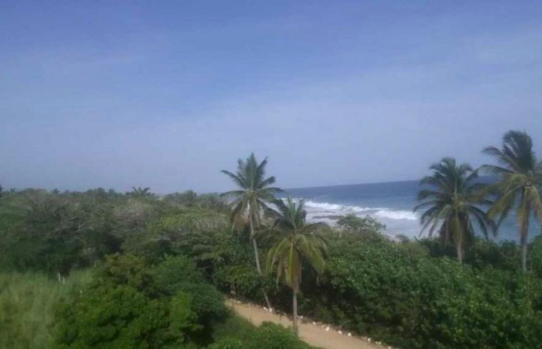 Agua Blanca / 1000 m2 / Vista al mar 1