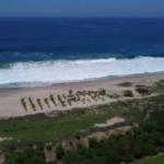 El venado / 4450 m2 / frente de Playa 2