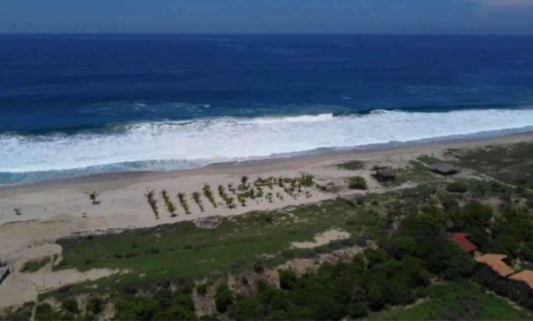 El venado / 4450 m2 / frente de Playa 1