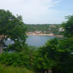 Hectarea en venta / Puerto Angel 2