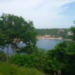 Hectarea en venta / Puerto Angel 3