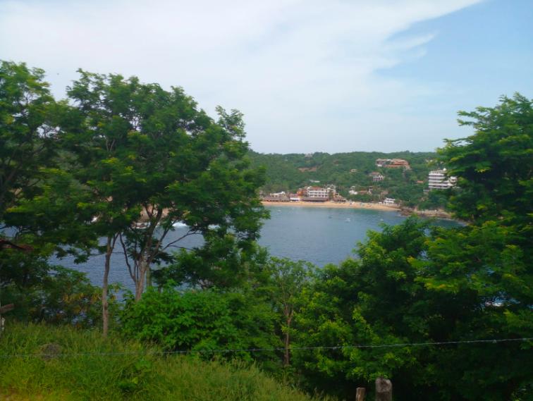Hectarea en venta / Puerto Angel 1