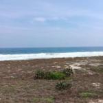 Playa el venado/4915 m²/terreno de playa 7
