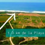Tierra Blanca / 2,000 m2 / Cerca de la playa 2