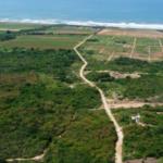 Tierra Blanca / 2,000 m2 / Cerca de la playa 8