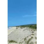 Playa Blanca / 80000 m² 5