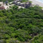 Chacahua / 2,000 m2 / Frente de Playa 6