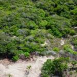 Chacahua / 2,000 m2 / Frente de Playa 8