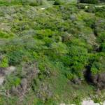 Chacahua / 2,000 m2 / Frente de Playa 10