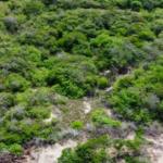 Chacahua / 2,000 m2 / Frente de Playa 11