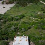 Chacahua / 2,000 m2 / Frente de Playa 12