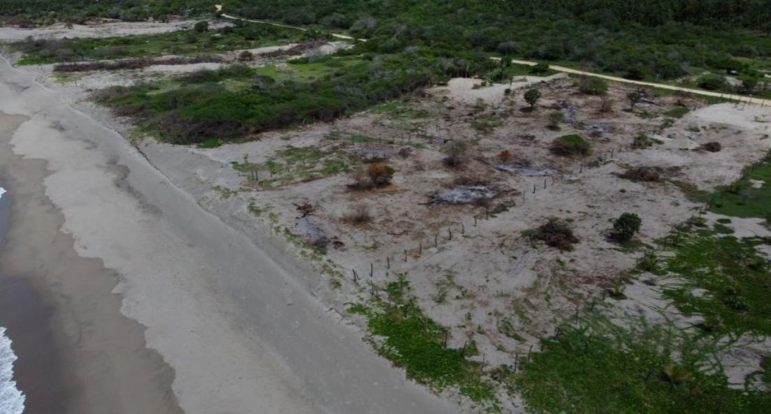 Chacahua / 2 lotes - 7200 m2 y 3850 m2 / con frente de playa 1