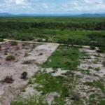 Chacahua / 2 lotes - 7200 m2 y 3850 m2 / con frente de playa 6