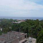 Punta Zicatela / 300 m2 / Calle principal 3