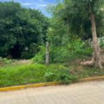 Punta Zicatela / 300 m2 / Calle principal 9