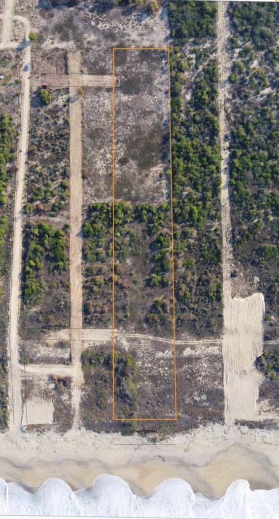 Terreno en venta en Palmerito / Puerto Escondido / 7500M 1