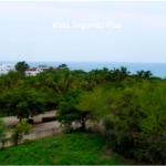 Rinconada/ Media Hectárea (5,000 m2) / Increíble vista al mar 3