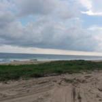 Palmarito / 3 Hectáreas / Frente de playa 2