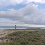 Palmarito / 3 Hectáreas / Frente de playa 5